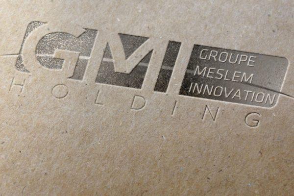 logo-gmi-holding